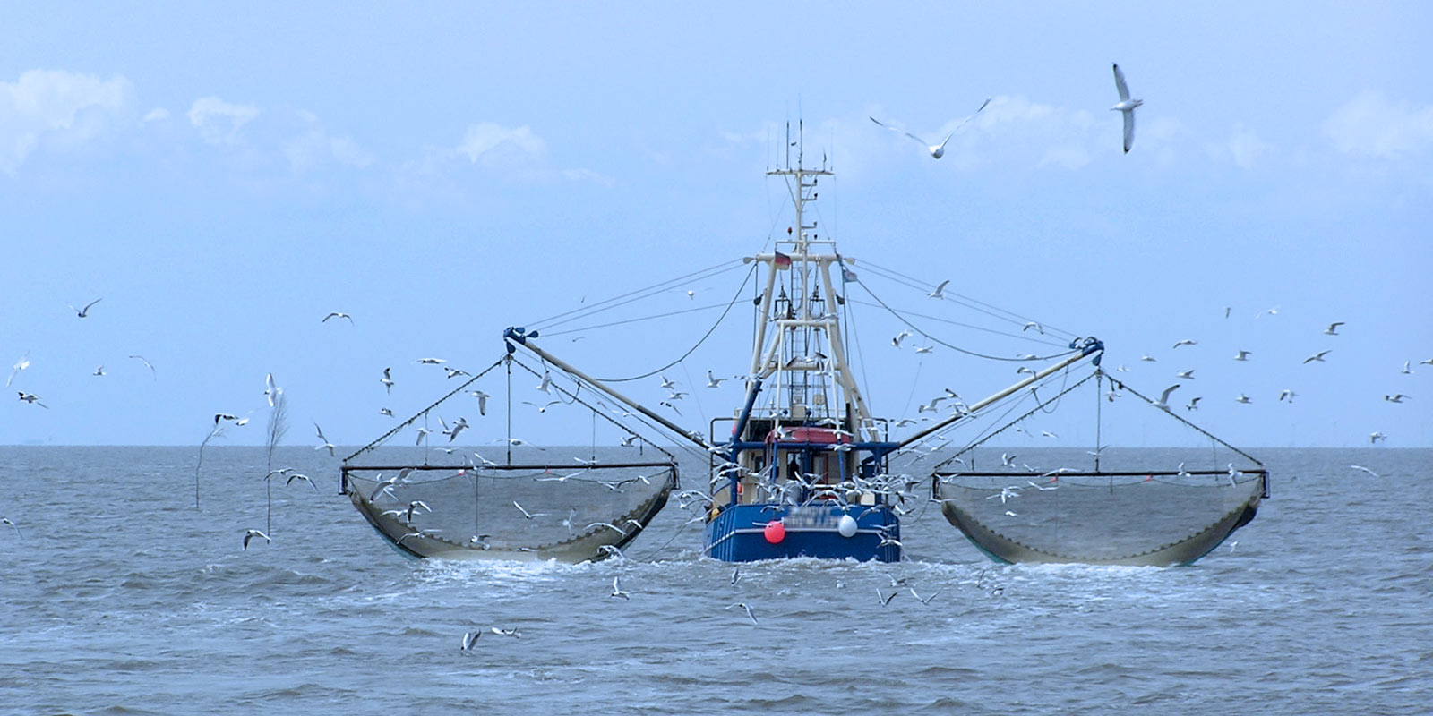 Fisheries crime threatens food security